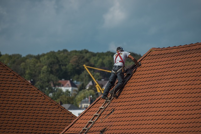 What are the Differences between Shingle and Tile Roofs and Life Expectancy of a Roof?